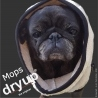 DRYUP CAPE MOPS & CO