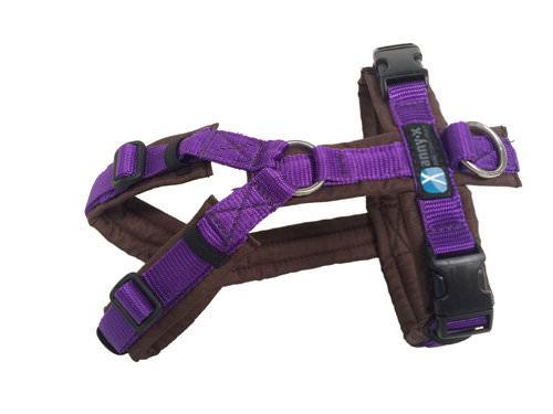 violett braun anny-x
